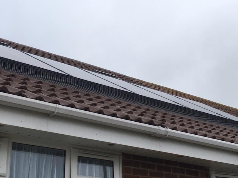 Solar Panel Bird Protection Kent